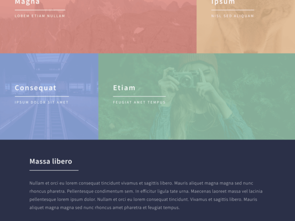 forty-divi-child-theme